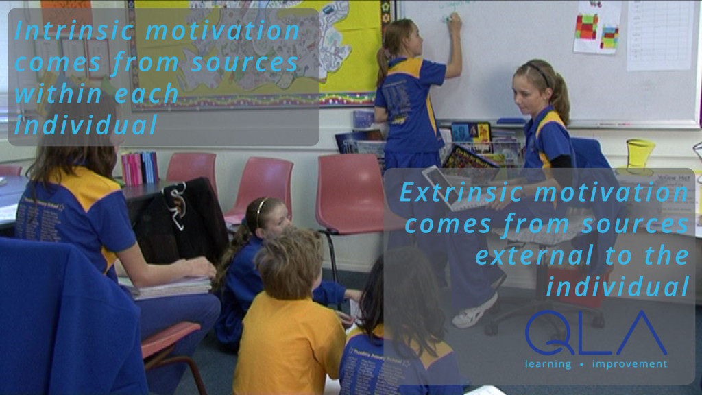 intrinsic motivation stems from sources within the individual, extrinsic motivation from sources external to the individual